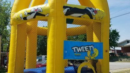 20ft Tweety Bounce House $150